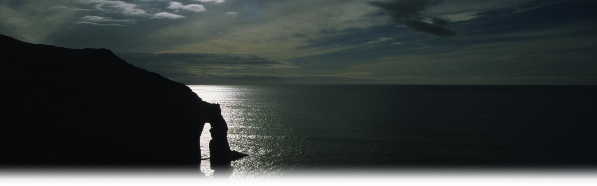 NZ Coastline
